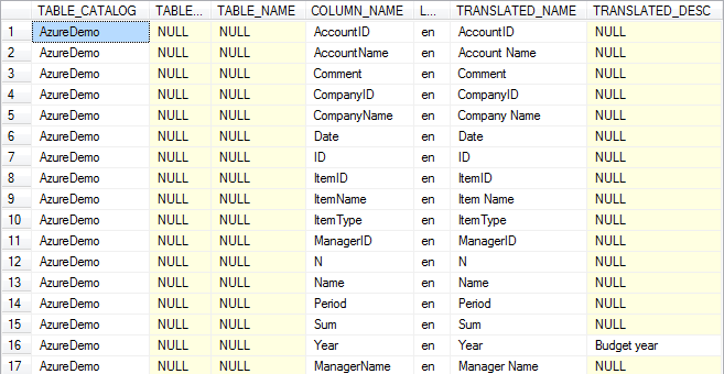 Database object columns translation view example